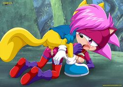 1boy 1girl doggy_style mobius_unleashed palcomix sonia_the_hedgehog sonic_(series) straight