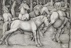 1534 ancient_furry_art animal_genitalia animal_penis anus ass balls cum cumshot ejaculation equine equine_penis female feral flared_penis forest grass greyscale group half-erect hans_baldung_grien hi_res hooves horse kick male male/female mammal masturbation monochrome nude on_hind_legs open_mouth orgasm outside penis proper_art public_domain raised_tail rejection renaissance signature standing teeth traditional_media_(artwork) tree underhoof woodcut